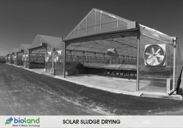 SOLAR SLUDGE DRYING